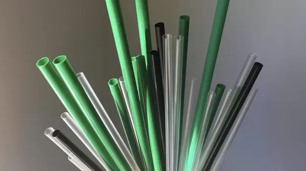 What are Compostable Straws?