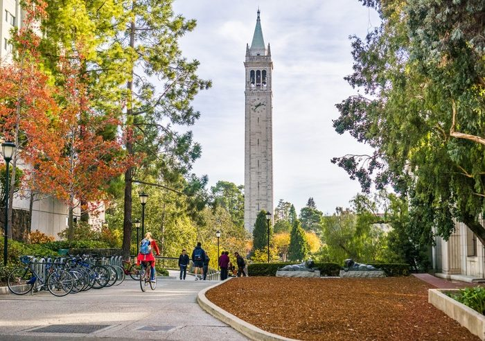 Activities to do in Berkeley year-round