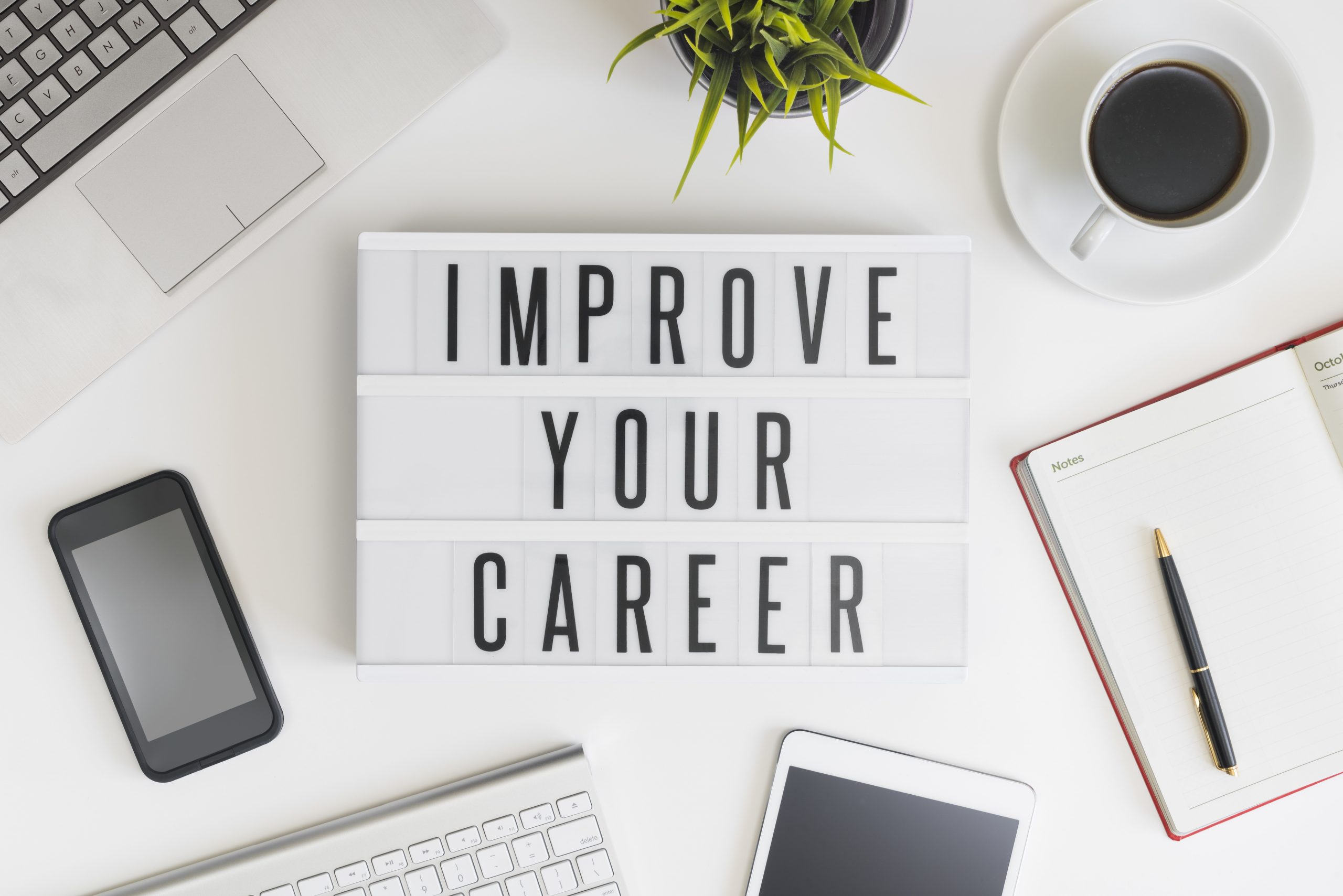 Why is it Essential to Invest in Life coaching as a Career?