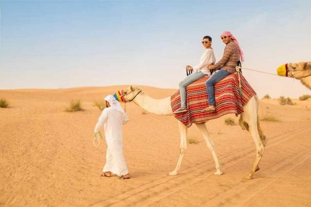 What Is So Fascinating About Desert Safari Dubai?
