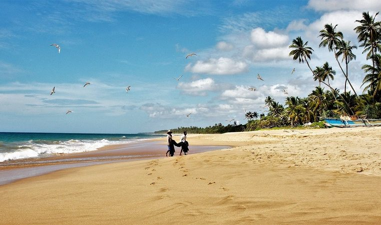 Planning for your first trip to Sri Lanka? Here are a few things to keep in mind.
