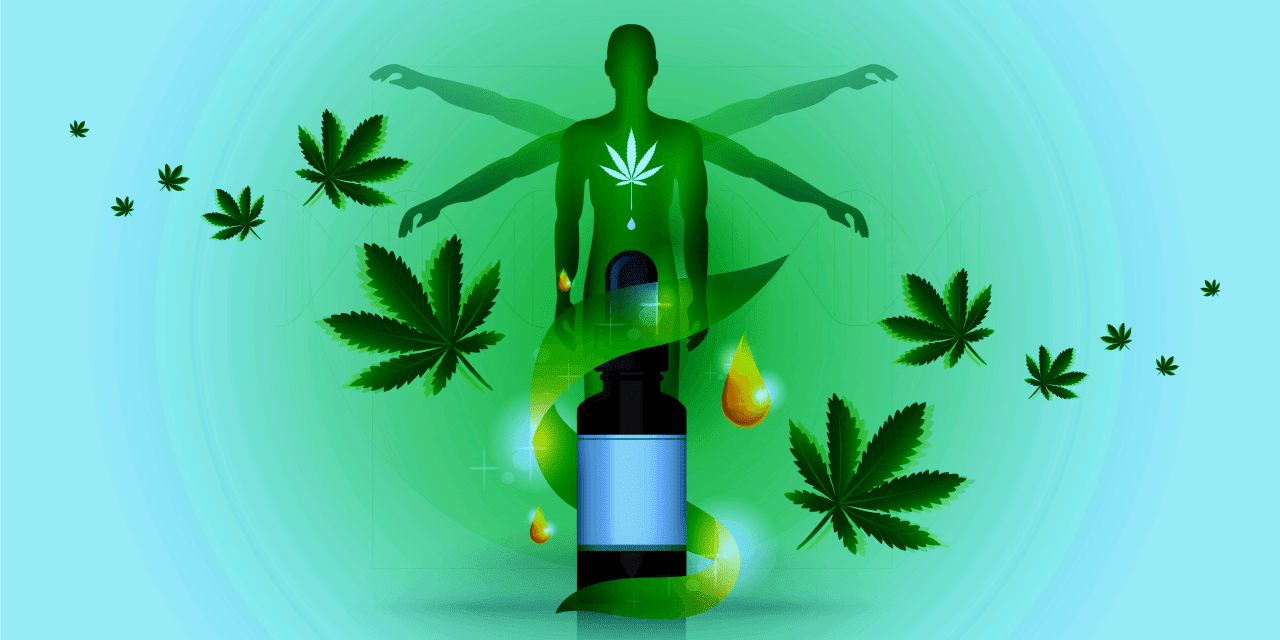 How Do CBD Products Benefit Your Endocannabinoid System (ECS)