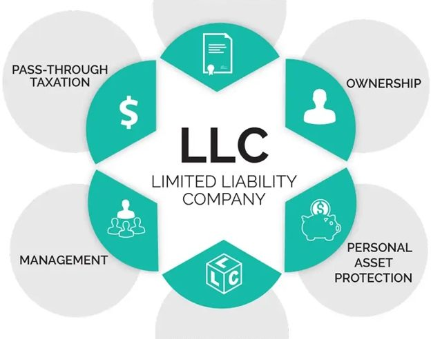 Public LLC vs Private LLC