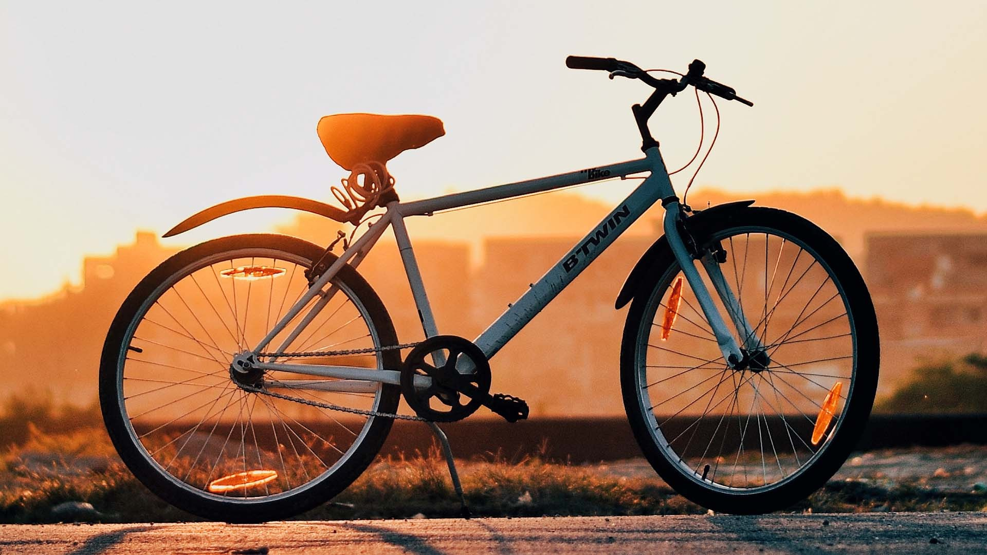 Best Bicycle Brands Available Today
