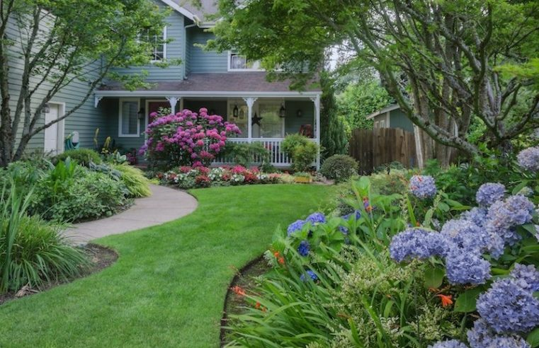 Why You Might Need Professional Landscaping in Davis County