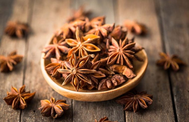 Benefits of Adding Star Anise: An Important Spice Famous For Its Medicinal Properties