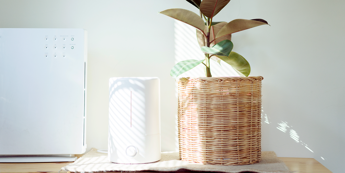 Everything to Know About a HVAC Air purifier functionality