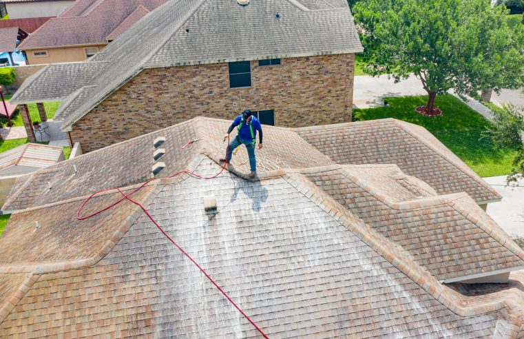 Why roof cleaning is important and what should you do?