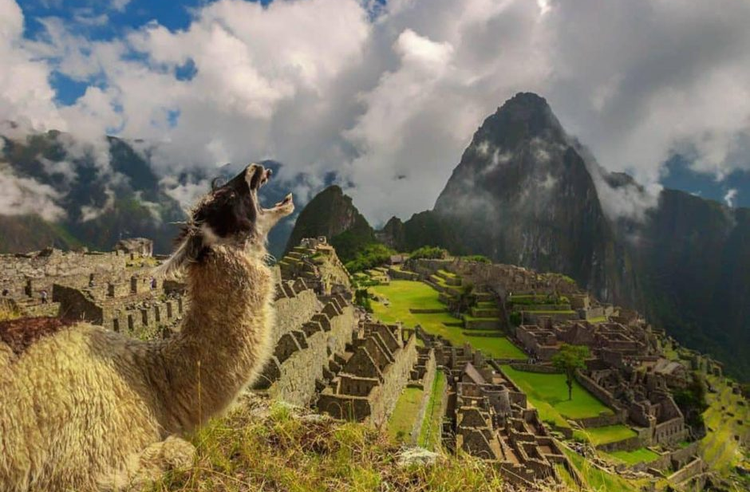 5 things to do in Peru in summer 2021