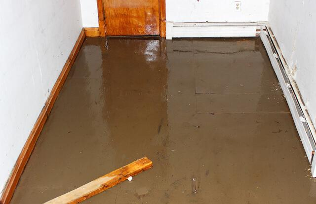 5 Essential tips to clean your basement post flood crisis