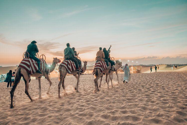 Why A Desert Safari Tour Should Be On Your Dubai Bucket List?