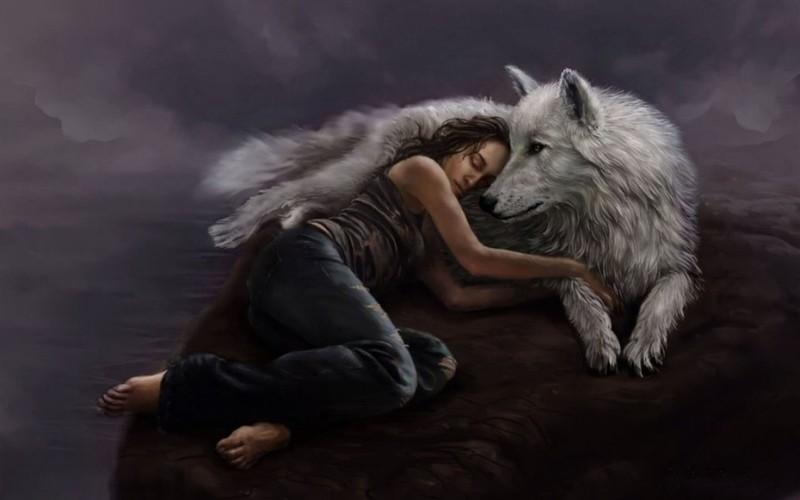 Read The Best Werewolf PNR Online