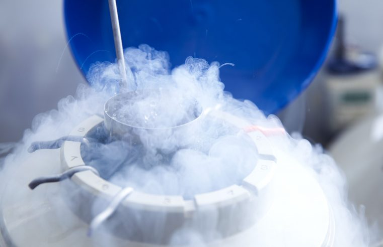 Importance of Egg Freezing Techniques in Family Planning
