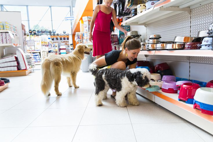 6 Marketing Tips to Grow Your Pet Business Online
