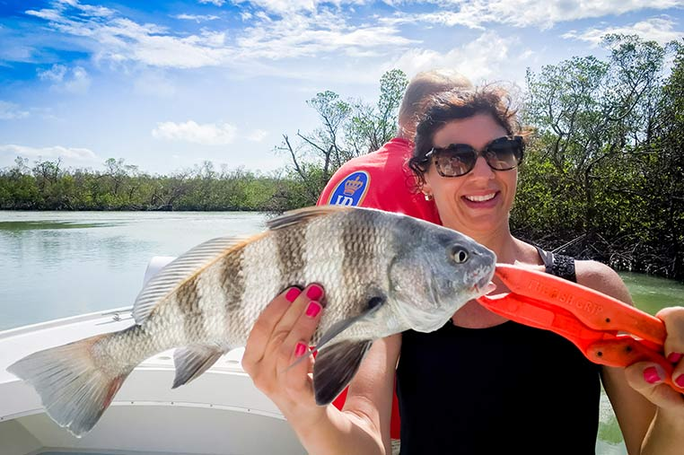 Marco Island Backwater Fishing Charters: The Only Place To Get Expertise In Fishing!
