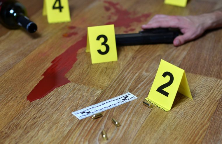 Exploring the World's Widespread Fascination with Murder Mysteries