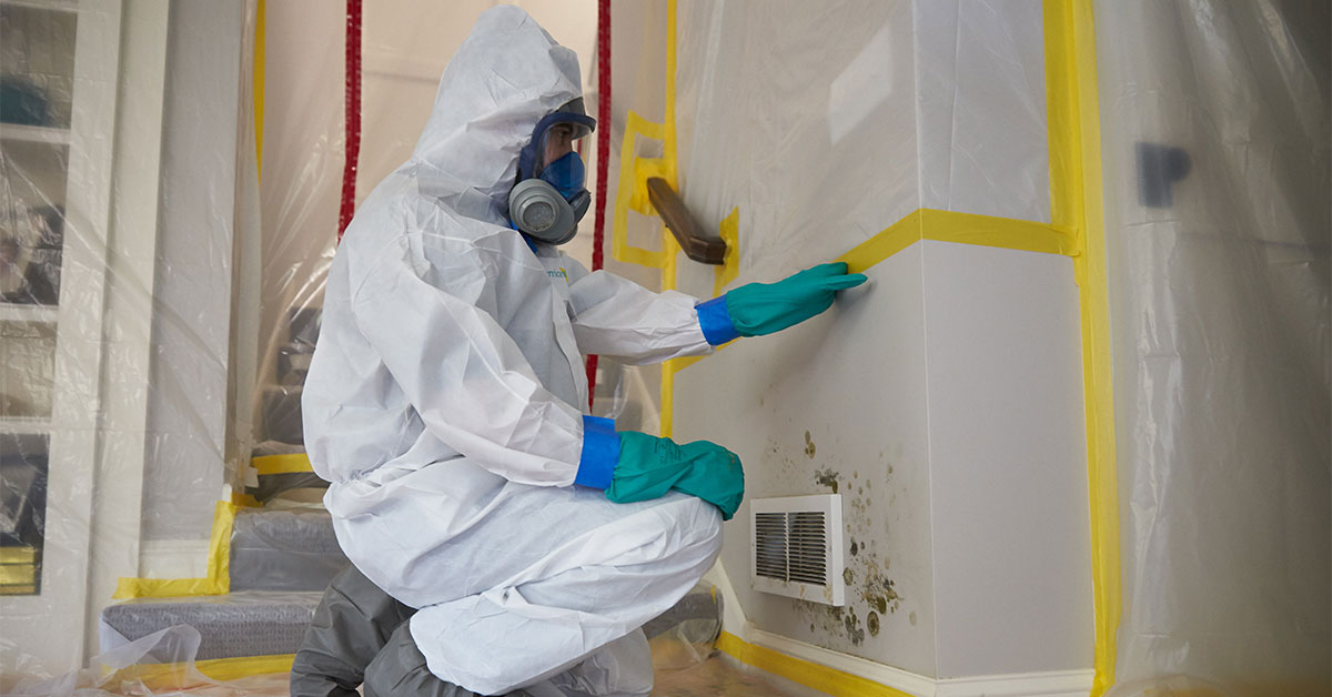 Three Things to Consider Before Hiring A Mold Removal Specialist in Houston, Texas