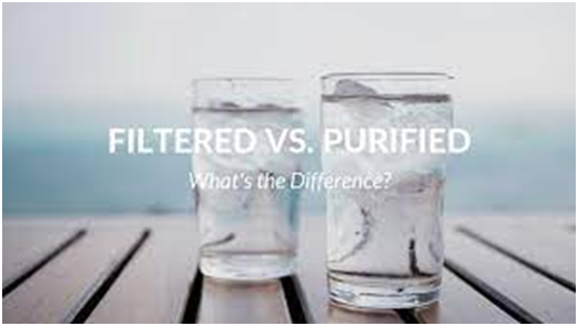 What is the difference between a water filter and a water purifier?